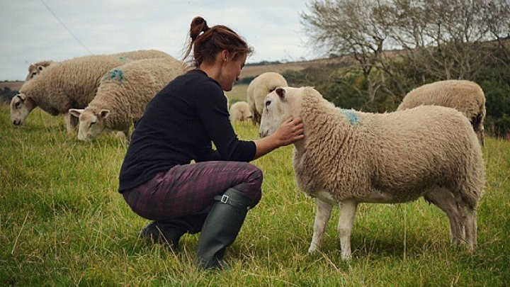 I quit my job to farm: Nicky Baker, Dorset