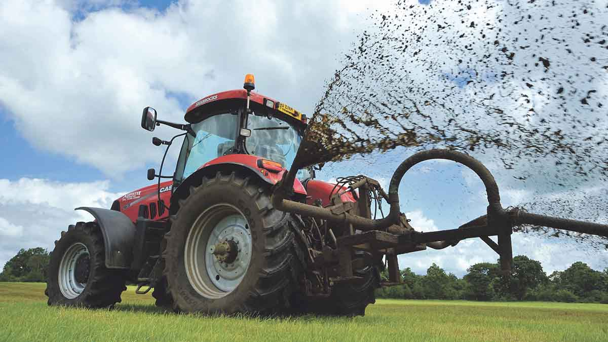 £3m scheme launched to help farmers cut ammonia emissions