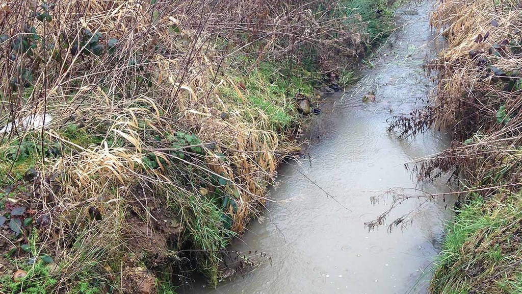 Farm tips: How to make the most of field drainage