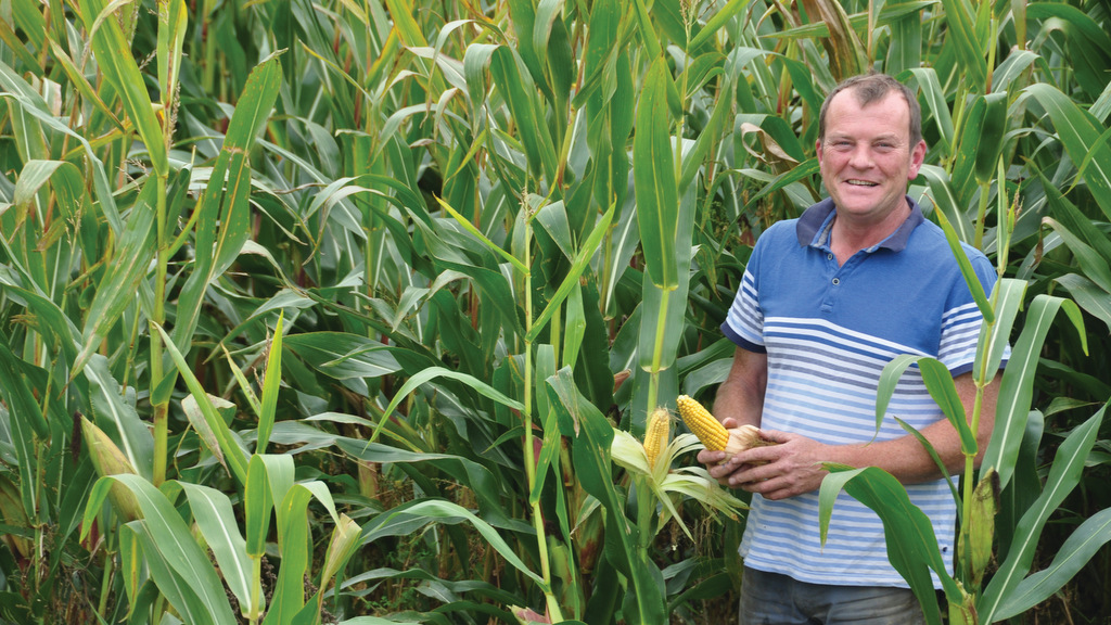 Case study: High quality varieties drive performance