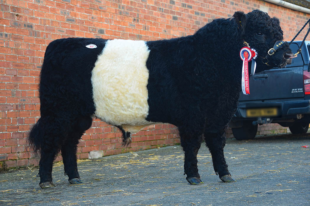 Pre-sale champion Lomond Bunnahabhain, which later topped the prices at 5,800gns.