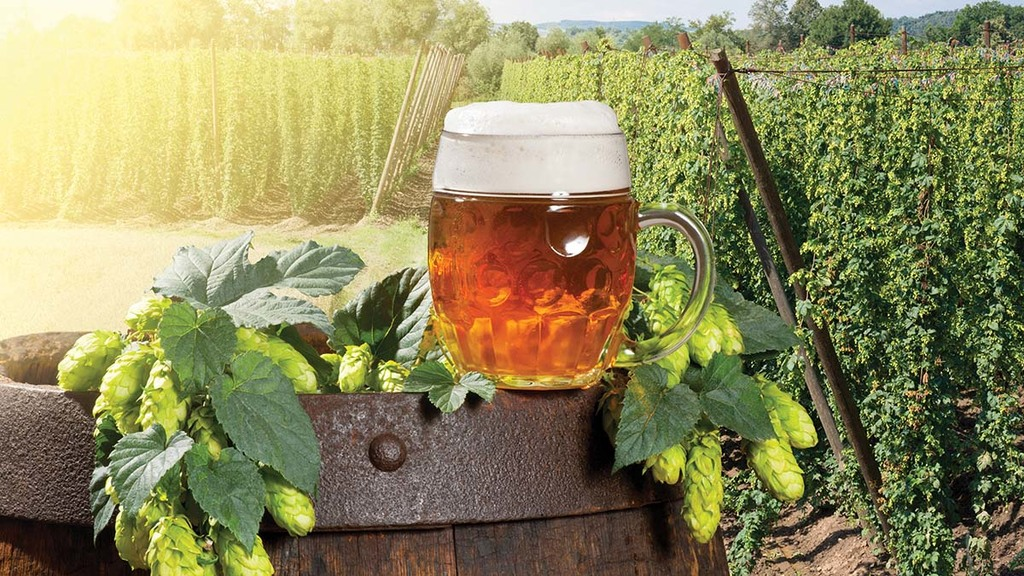 How farmers can cash in on the latest craft beer craze