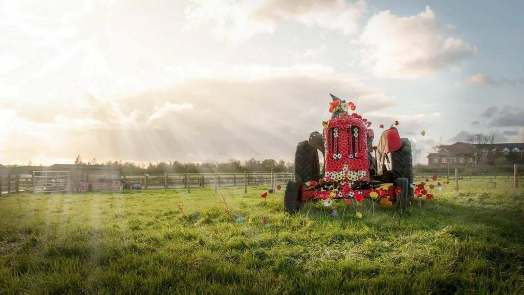 Artist pays tribute to Remembrance Day with striking poppy covered tractor