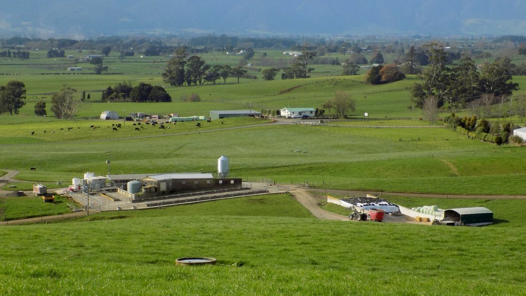 Fitzi Farm, foreground, requires few buildings for a pastoral based system.