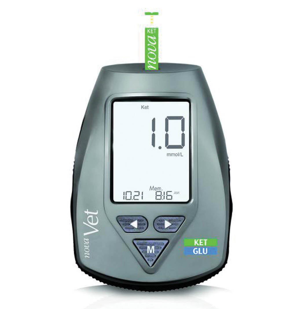 Ketone monitors