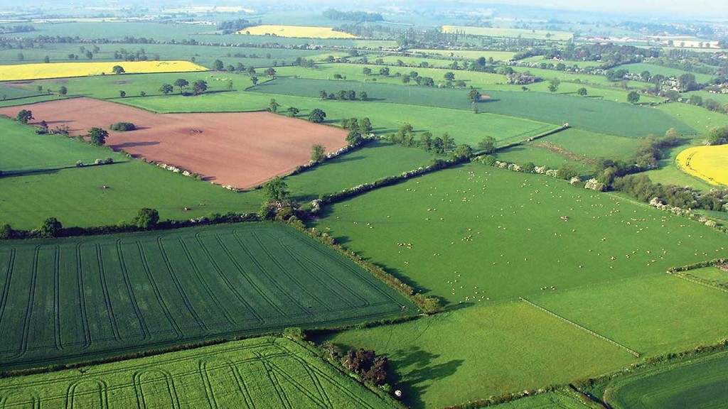 NFU seeks improvements to farming rules during Brexit transition period