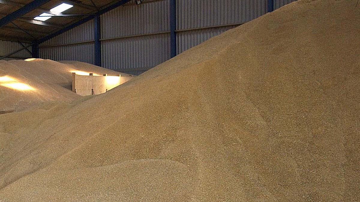 Keeping an eye on the grain market: April 5 update