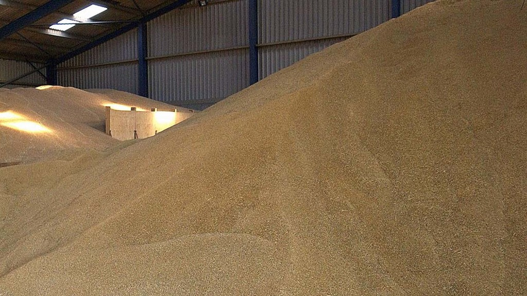 New crop wheat prices reacting to possible 'no deal' Brexit scenario