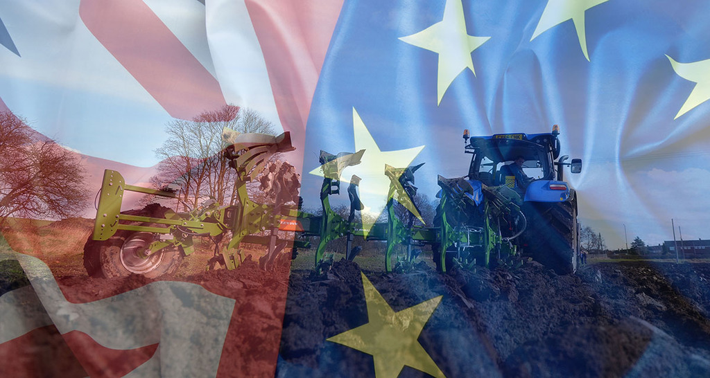 UK and EU Brexit divorce deal: What does it mean for farmers?