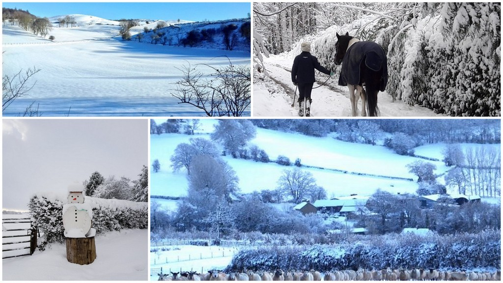 15 festive farming photos: Winter wonder - farm - land!