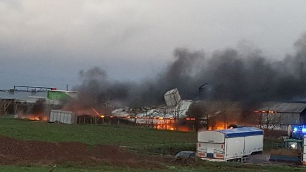 Fire hits turkey farm just weeks before Christmas after 'massive explosion'