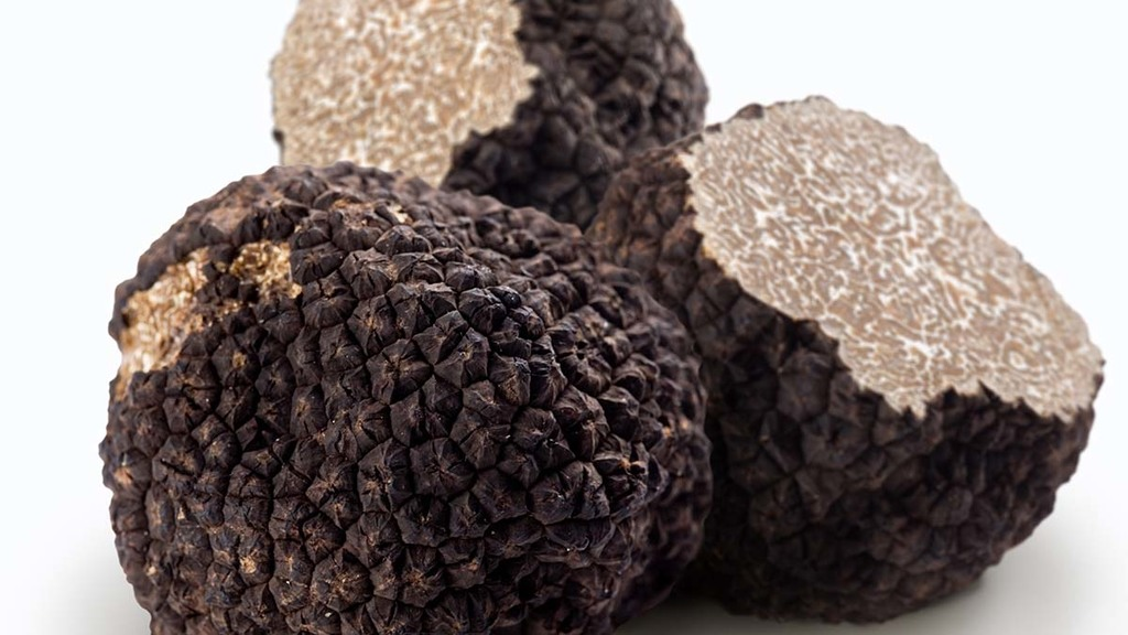 £900 per kg truffles being grown in the UK - the start of a profitable industry?
