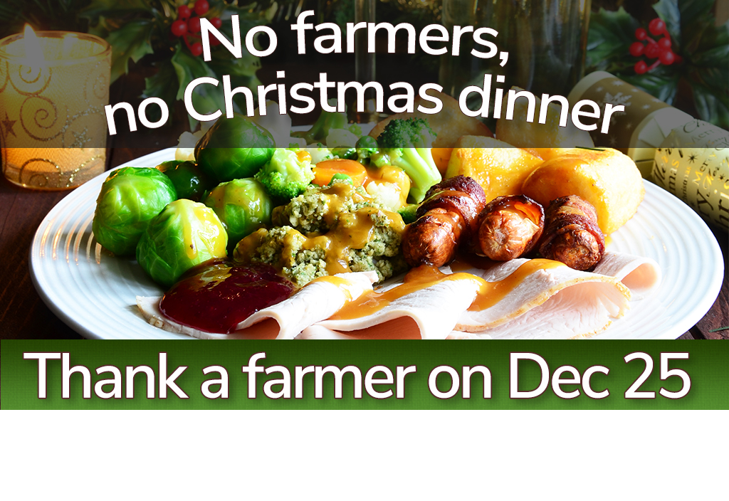 No farmers, no Christmas dinner: This is the history of your festive feast