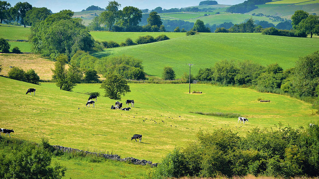Eight factors differentiating the top-performing UK farms