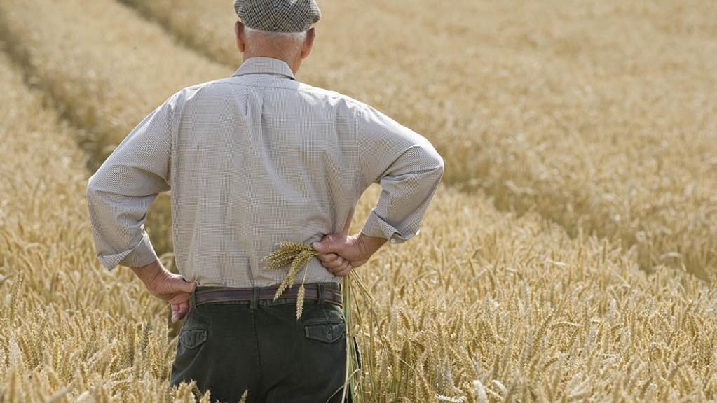 Trump's withdrawal from trade pact hits US farmers