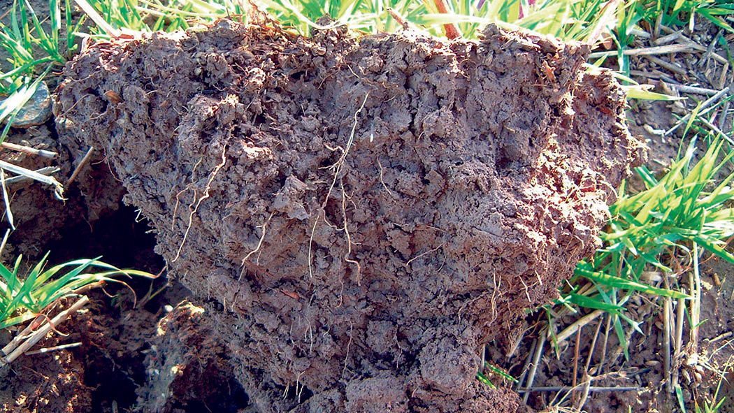 Cereals 2018: Taking the initiative to deliver soil health
