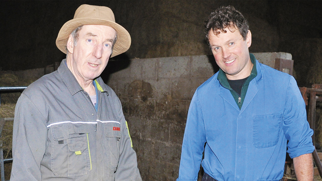 Calf health: Plan to prevent scours in beef calves