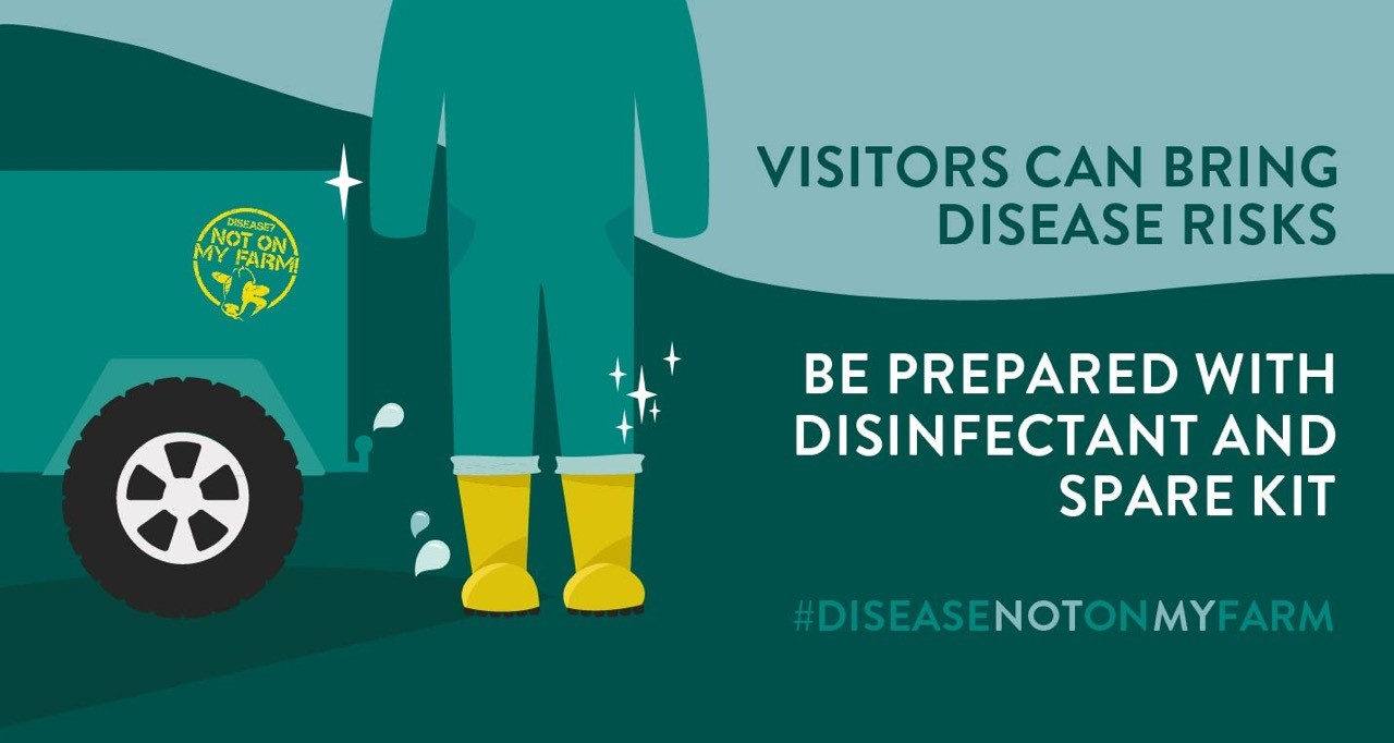 Visitors can bring disease