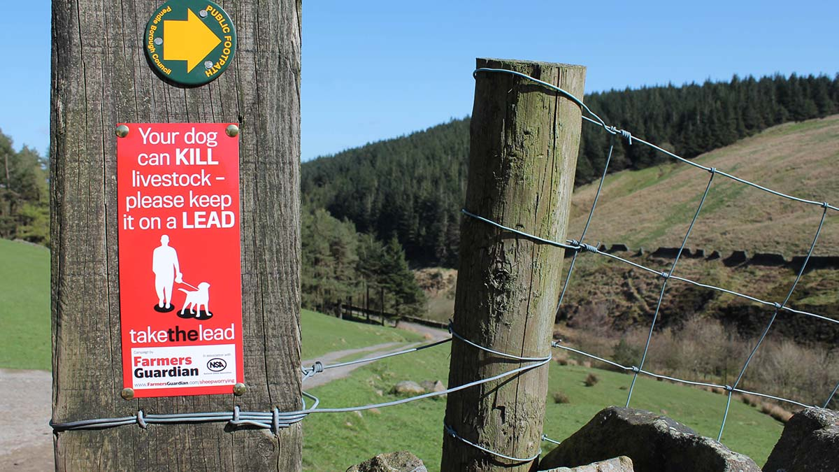 Farmers Guardian's Take the Lead campaign continues to raise awareness of dog attacks