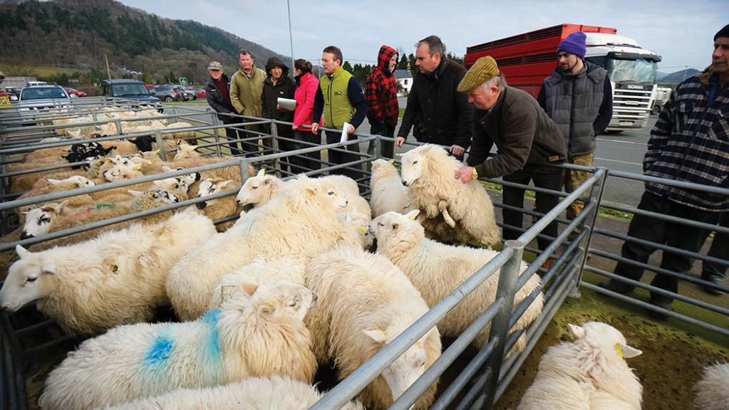 'The local mart has remained the social and financial centre for our sector'