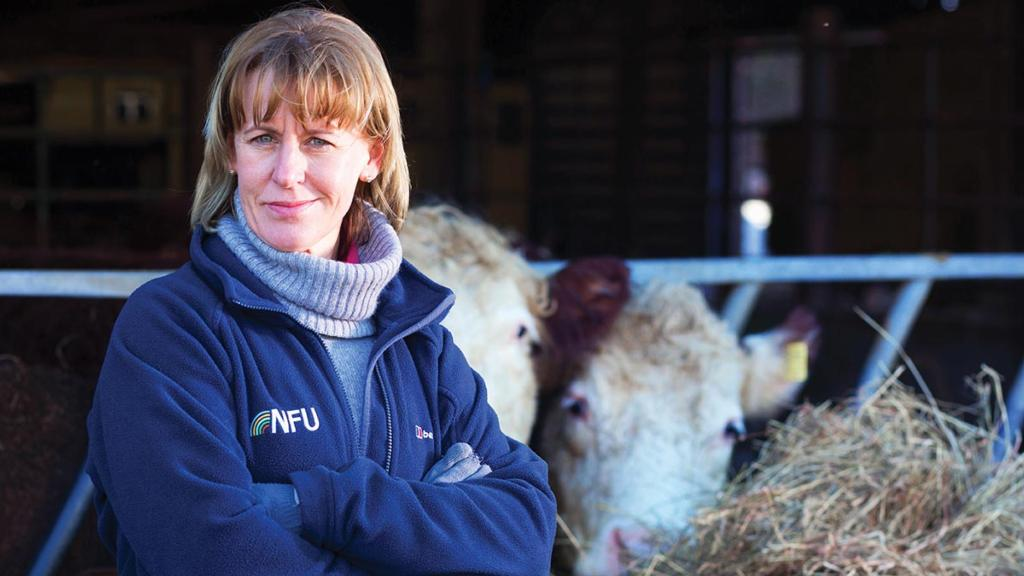 Put British farming on the global map, says new NFU president Minette Batters