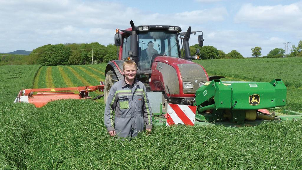 Maximising yield from forage