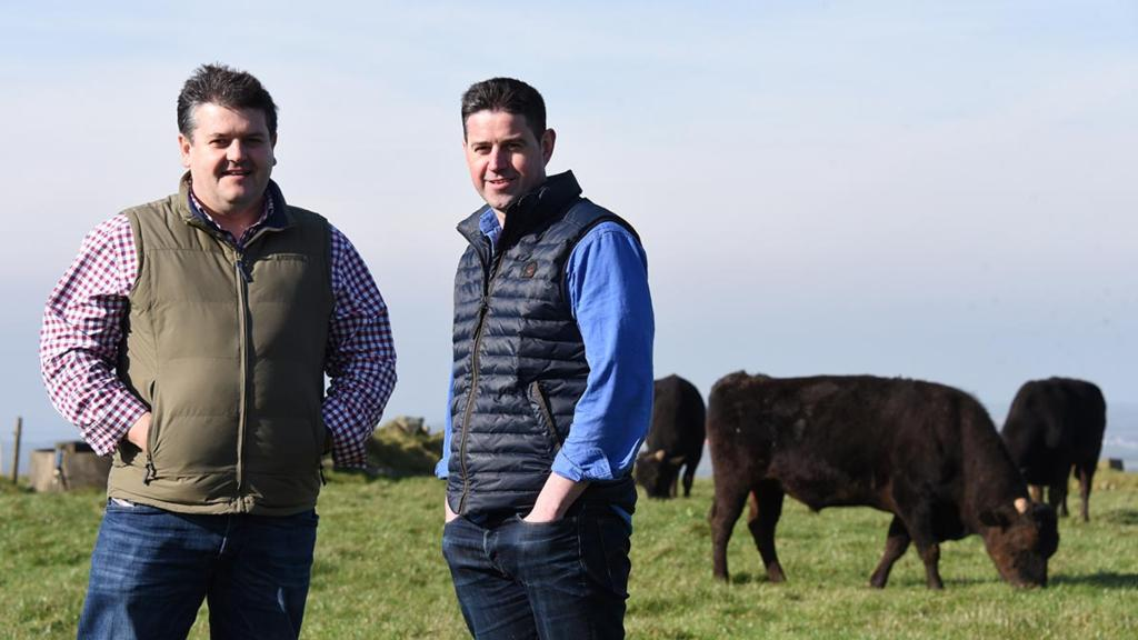 Welsh duo introduce Wagyu the natural way