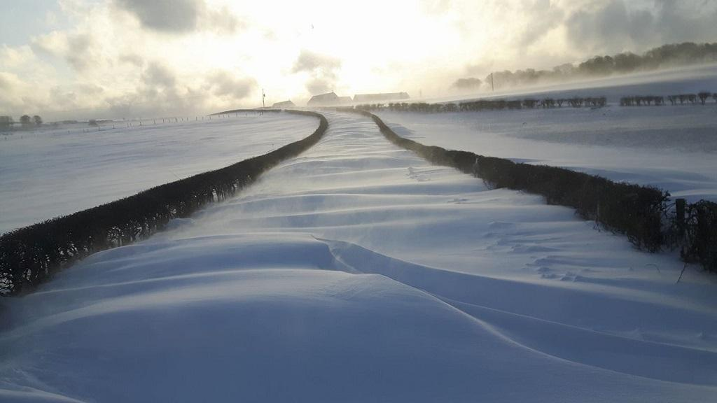 Farmers suffering after snowy weather still waiting for BPS