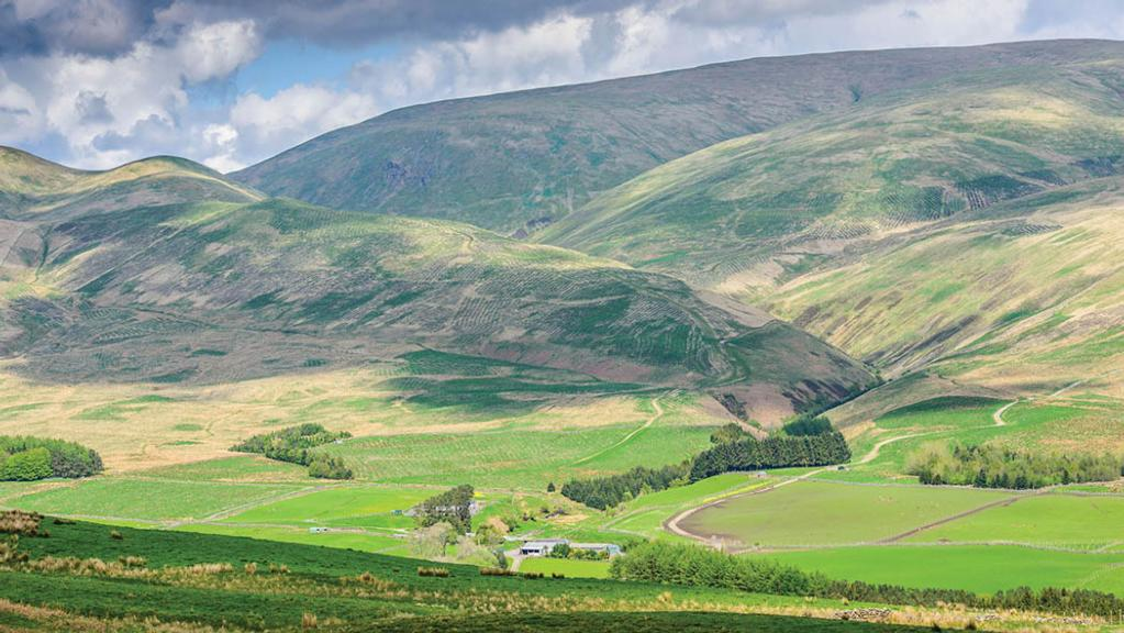 Scottish Ministers slam UK for short-changing rural departments on Brexit