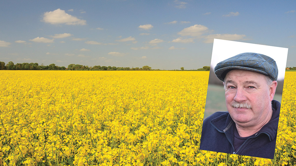 Structural reforms for OSR yields