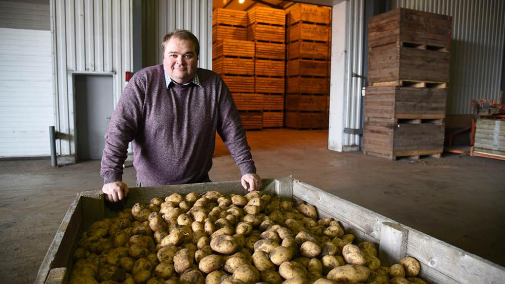Investing in quality potato production key to SPot Farm's success