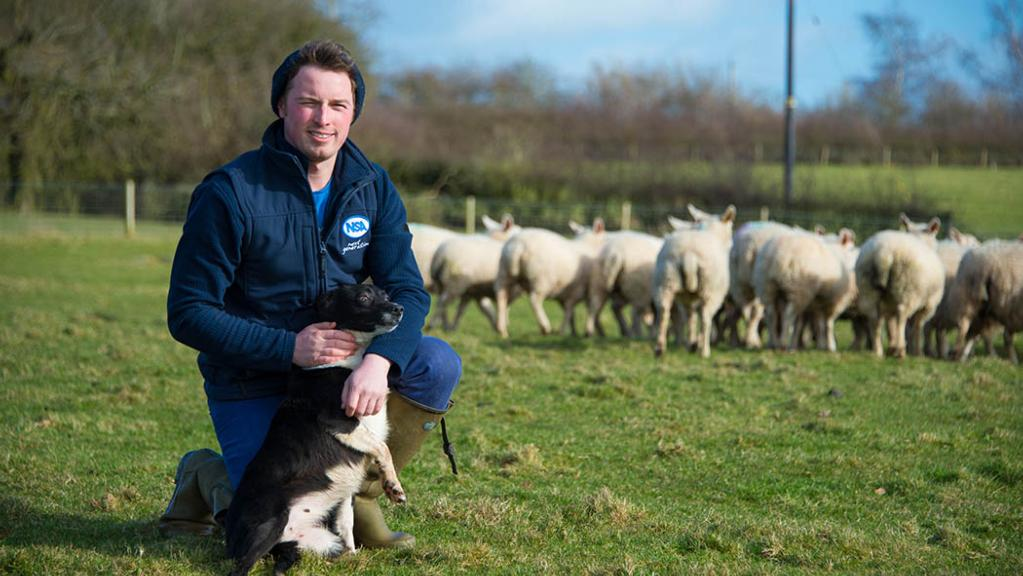 Tom Chapman is confident of cementing a long-term career in agriculture