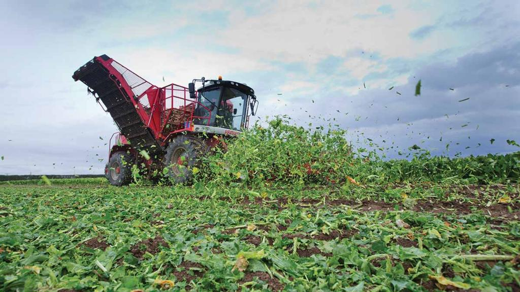 A look at the UK sugar beet industry's future