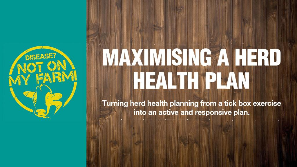 Maximising a herd health plan positively and effectively