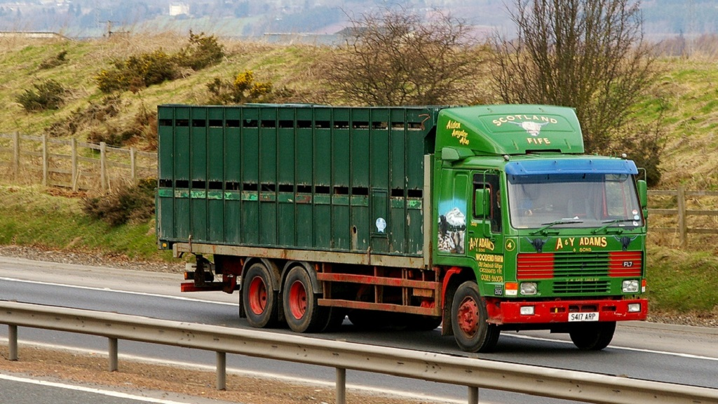 Livestock firm's transport licence suspended for six weeks