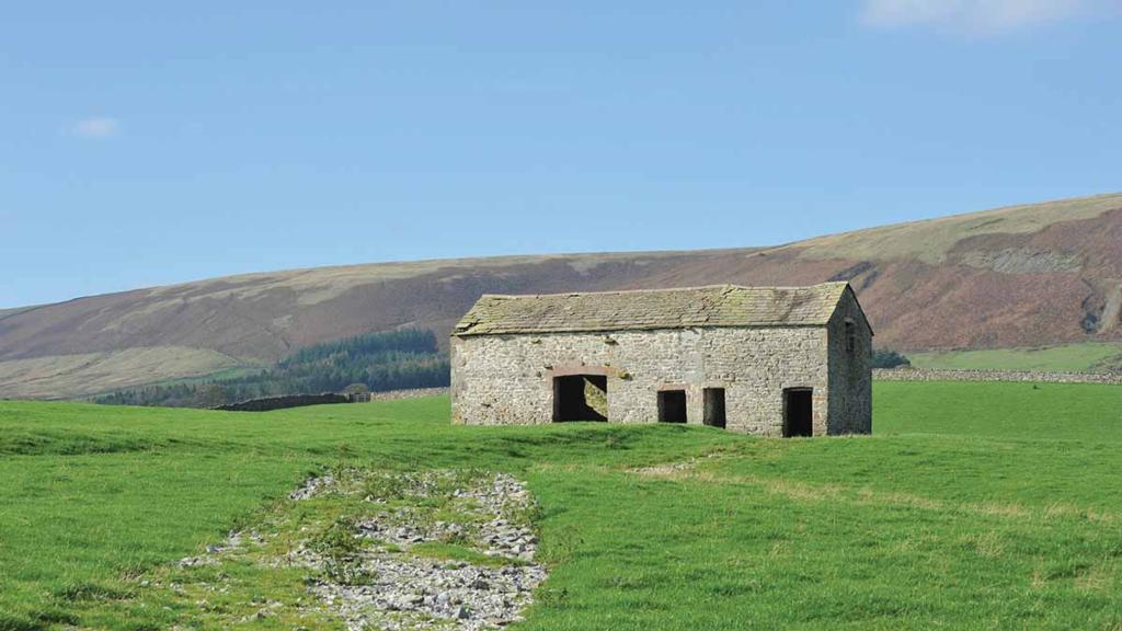 Diversification on your farm: A guide to setting up and getting started