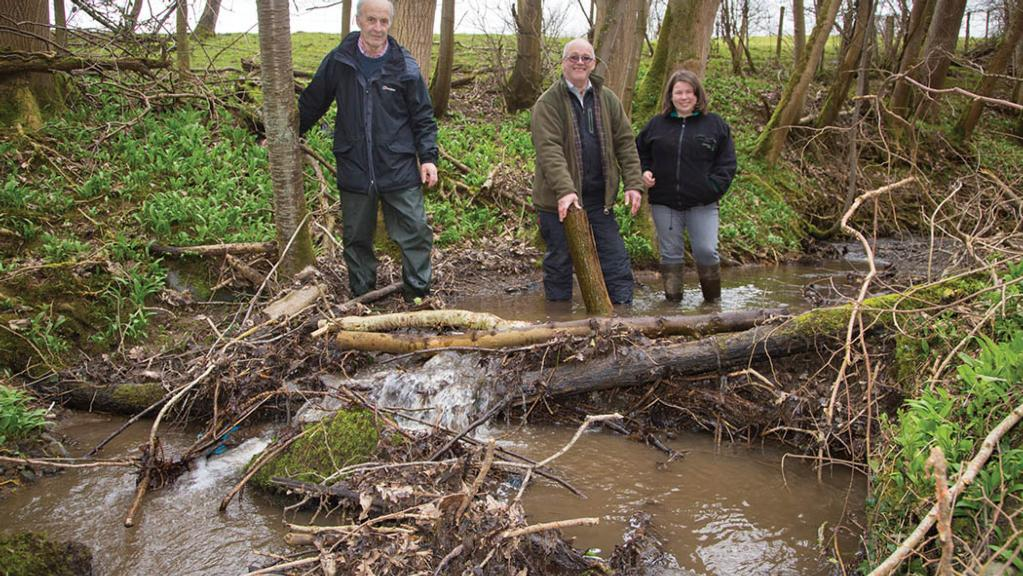 Farmers to use leaky dams and hedges as flood prevention