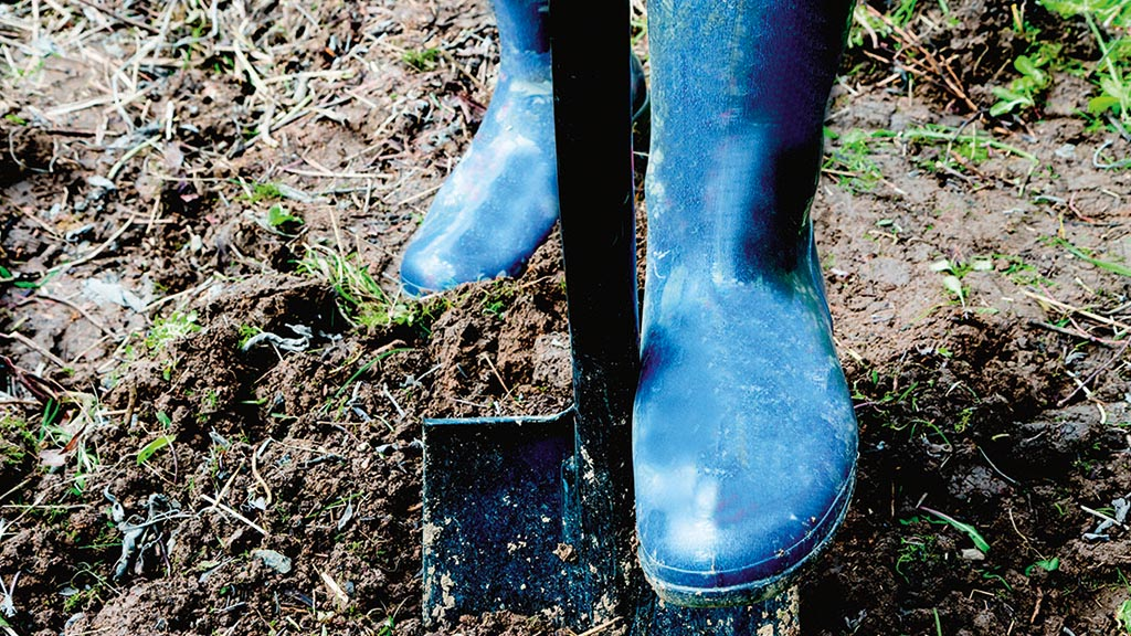 Getting the measure of soil health