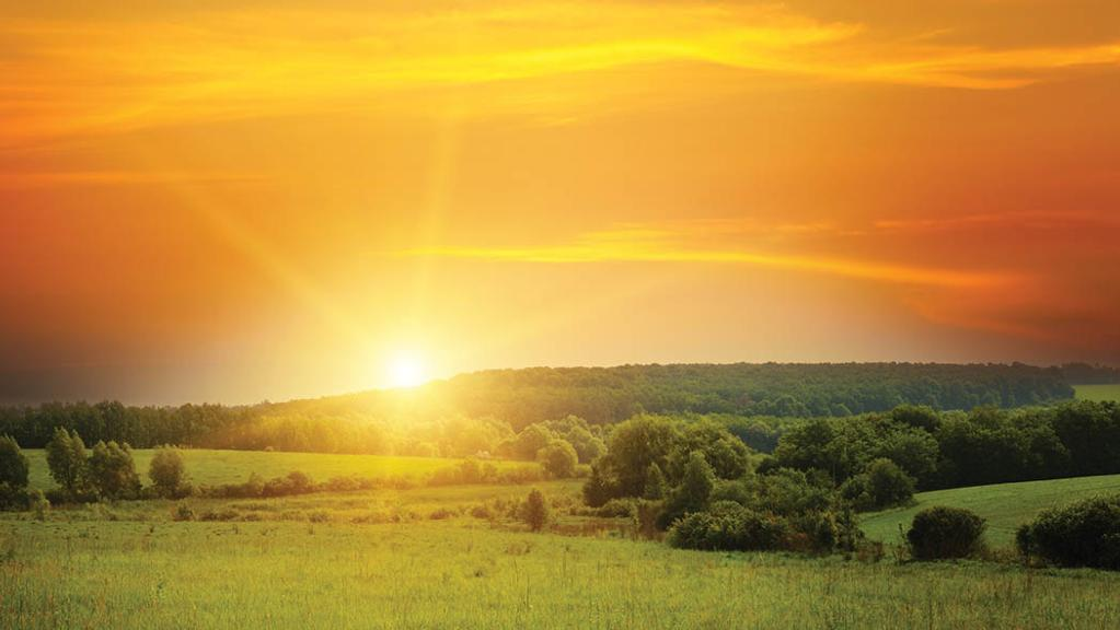 New decade, new dawn: UK agriculture enters 2020 on firm footing