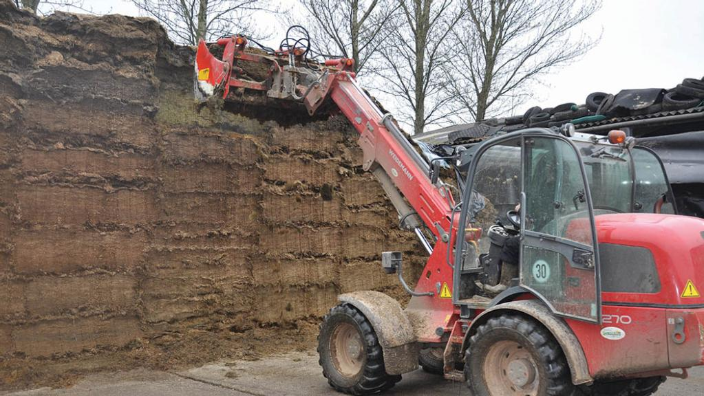 Rules for storing silage: What all farmers need to know