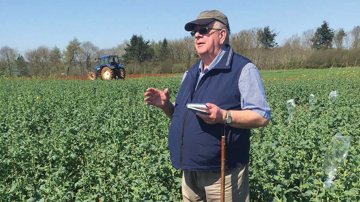 RL success for independent OSR breeder