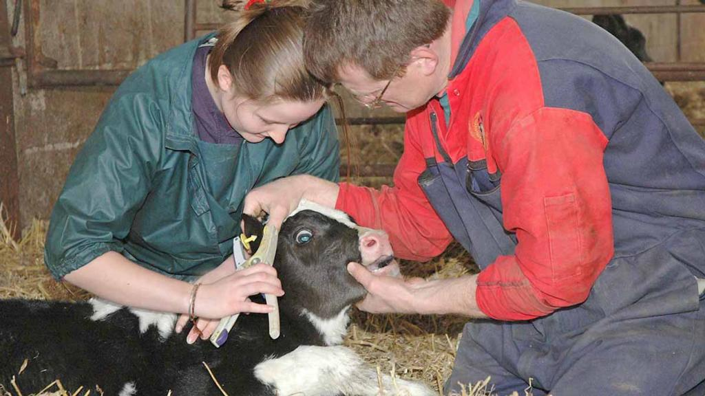 Specialist colleges paving the way to a career in modern agriculture