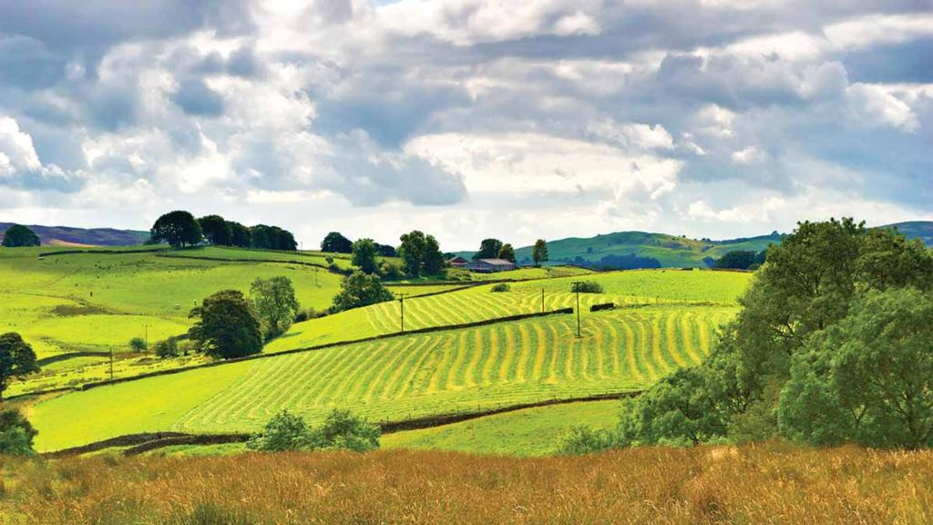 'Eco-friendly farming most environmentally damaging'