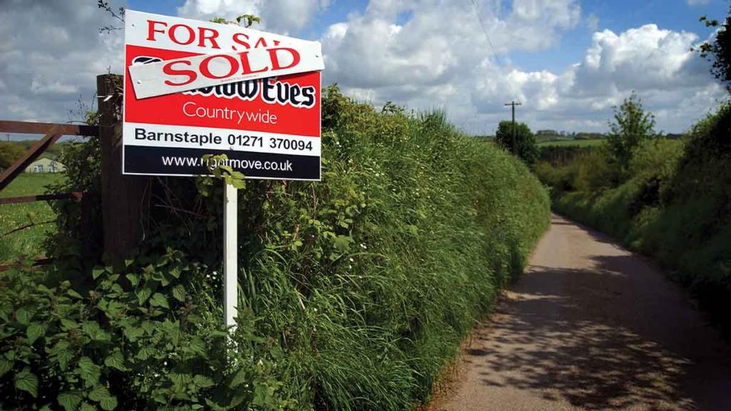 Property special: Stability returns to farmland markets after quiet start