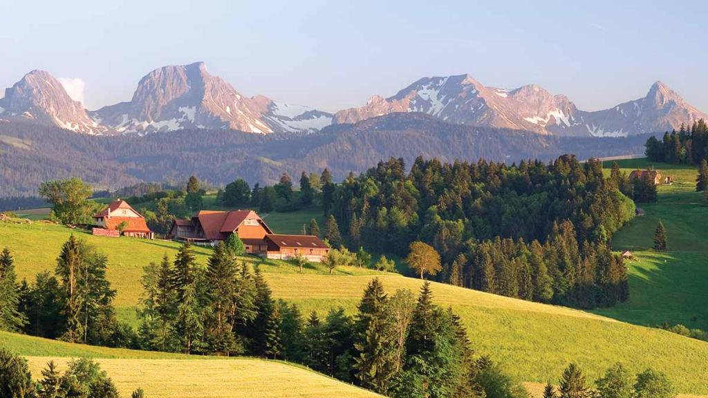 Switzerland to vote on banning all synthetic pesticides in agriculture