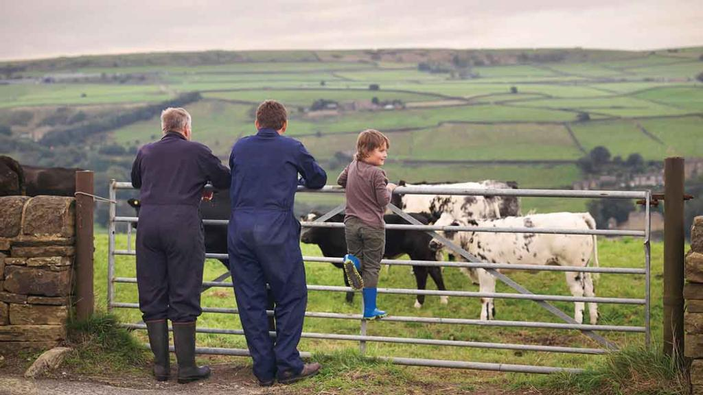 Farming family businesses 'vital force' in UK economy