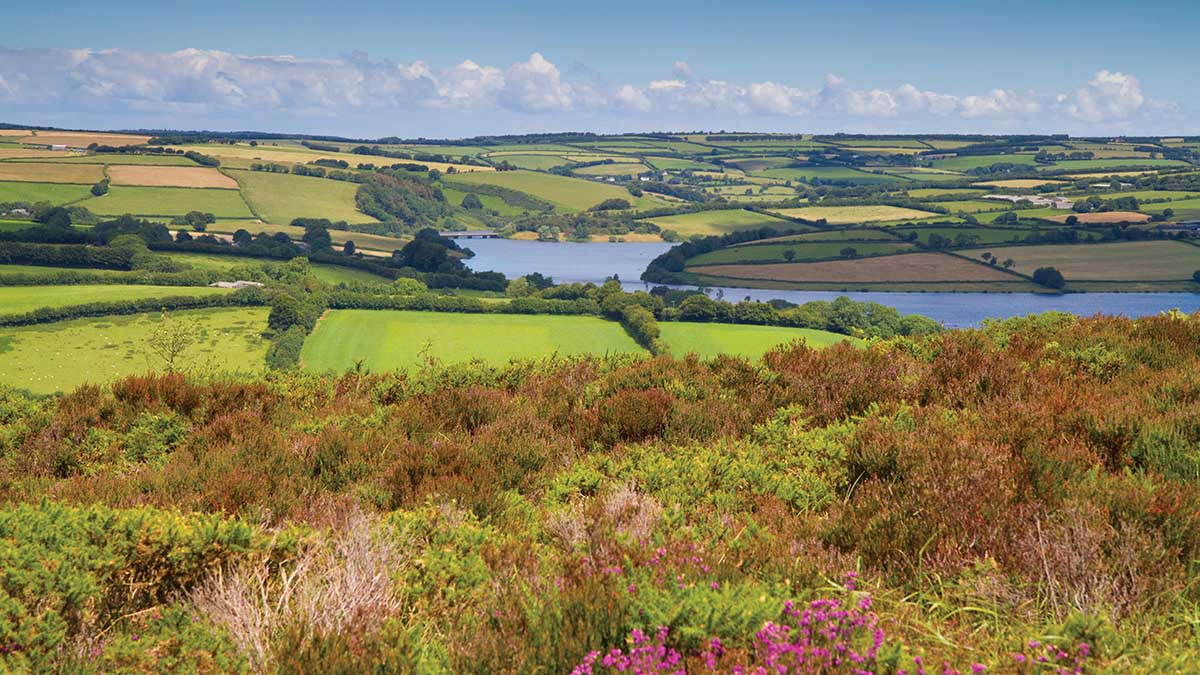 Farmers have 'crucial role' in AONB and National Parks reform