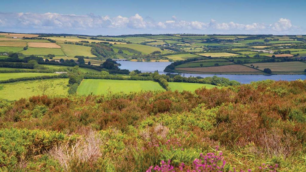 'It is possible for the voice of the uplands to be heard'