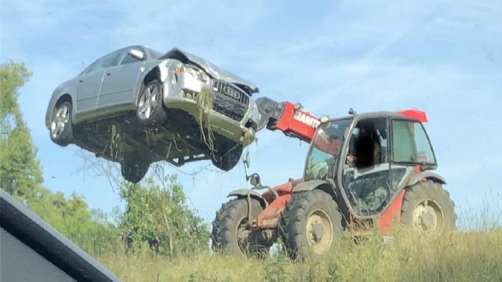 Don't crash your Audi A4 into a field full of livestock - and then run off...