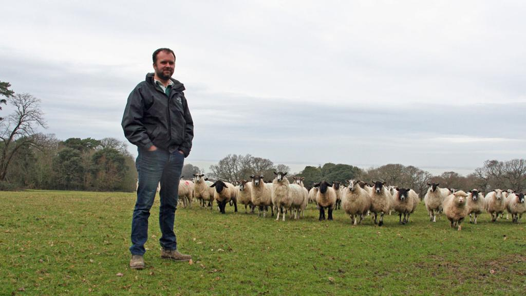 Farming is a resilient industry, but there is still much work to do to prepare us for Brexit